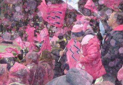 Tribune des Amis pendant Stade vs Racing 92
