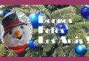 Bonnes Fêtes à toutes et à tous !